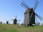 Oland windmills