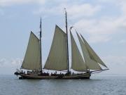 Brown boat in Hoorn