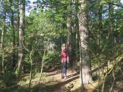 Walking through Harstena
