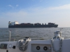 Shipping on the Elbe