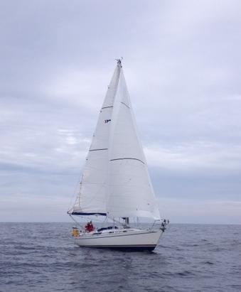 Charmary sailing towards Eyemouth