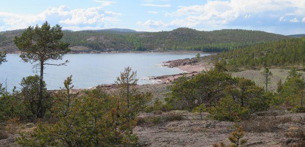 Nonchalant Norrfällsviken